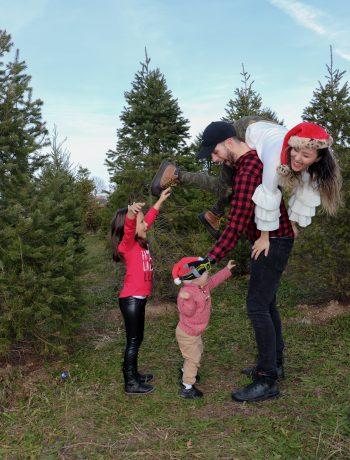christmas tree farm near me